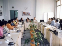 meeting of UNV advocacy-committee-at-undp-june1-09